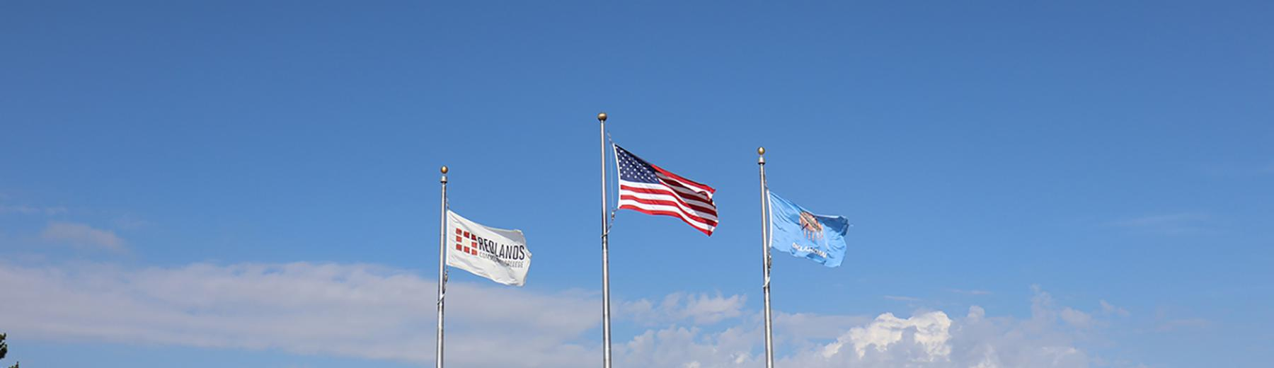 flags flying in front of campus